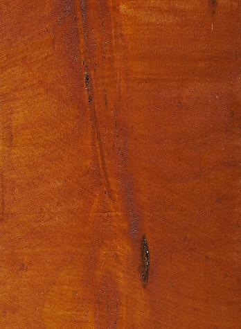 Merbau on Treated Pine