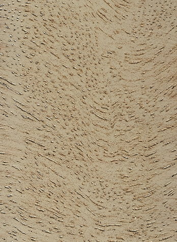 Driftwood on MERBAU
