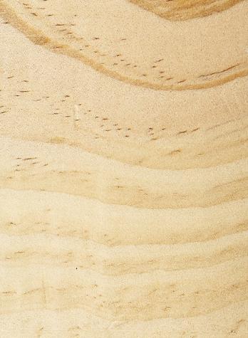 Uncoated Treated Pine
